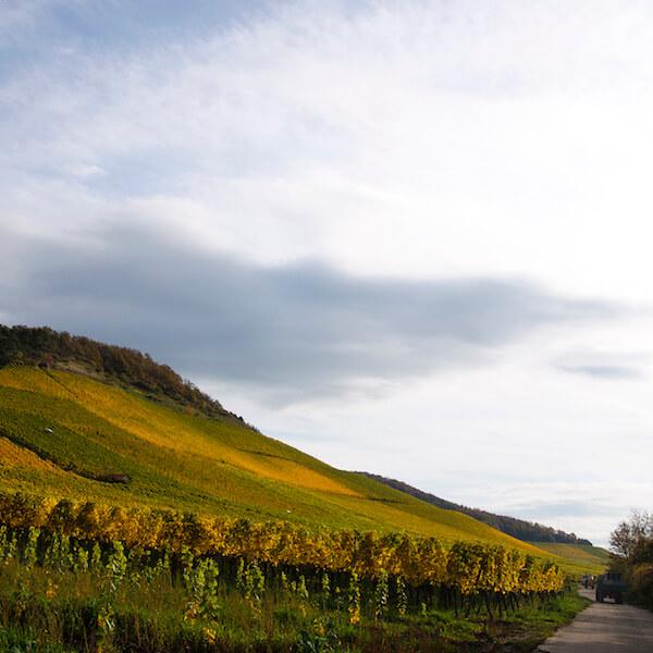 Iphofen – Julius-Echter-Berg
